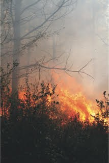 State forestry officials say drought conditions continue in Rabun County and urge anyone who wishes to do outdoor burning to use caution.