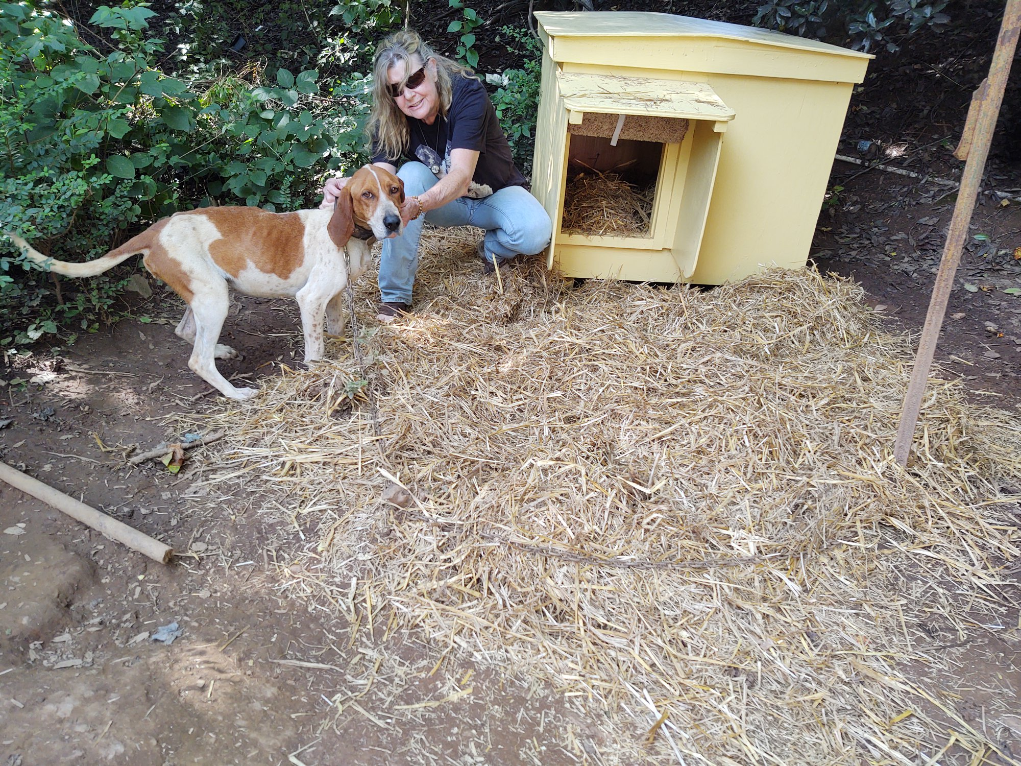 Photo courtesy Ervin Leonard. Brenda Nash, founder of Habitat for Hounds, poses with one of the dogs that the organization provided with a dog house.